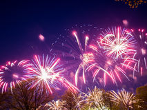 Groot kleurrijk vuurwerk Stock Afbeelding