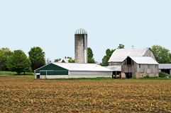 Groot Landbouwbedrijf Stock Foto