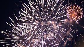 Groot mooi exploderend vuurwerk in de donkere hemel Veel heldere gekleurde lichten Feest begroeting stock footage