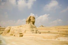 Groot oud beeldhouwwerk van Egyptische sfinx Stock Afbeelding