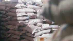 Groot pakhuis met zakken bij de fabriek van macaroni stock video