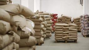 Groot pakhuis met zakken bij de fabriek van macaroni stock videobeelden