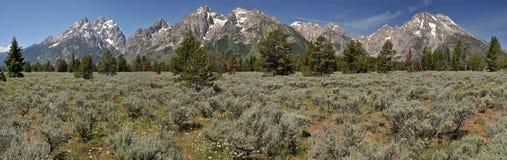 Groot panorama Tetons Stock Afbeeldingen