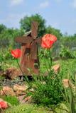 Groot papaversclose-up Mooie grote rode bloemen stock fotografie