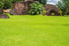Groot rotsen en gras in de blauwe hemel Stock Afbeelding