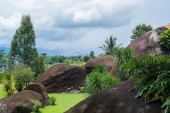 Groot rotsen en gras in de blauwe hemel Stock Afbeeldingen