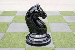 Groot Schaakbord - Groot Paardschaak Royalty-vrije Stock Fotografie