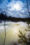 Groot sneeuw ontdooid flard in de houtlente Royalty-vrije Stock Foto's