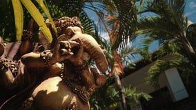 Groot standbeeld van Hindoese deity Ganesha tussen bomen, Bali, lage hoek stock footage