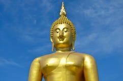 Groot standbeeldbeeld van Boedha Stock Fotografie