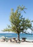 Groot Turk Island Picnic Place royalty-vrije stock foto