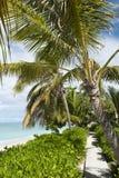 Groot Turk Town Beach Royalty-vrije Stock Foto