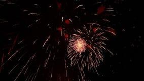 Groot vuurwerk voor de vakantie stock videobeelden