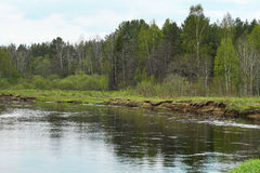 Groot water in de vroege lente Royalty-vrije Stock Afbeeldingen