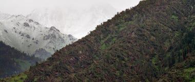 Groot windonweer in berg Royalty-vrije Stock Afbeeldingen