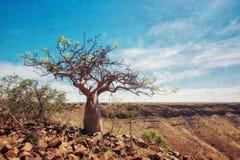 Grootberg jar w Północnym Namibia brać w Styczniu 2018 obraz stock
