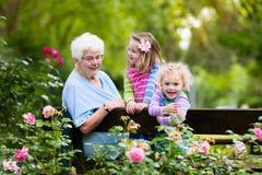 Grootmoeder en jonge geitjes die in roze tuin zitten stock foto's