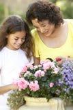Grootmoeder en Kleindochter die samen tuinieren Royalty-vrije Stock Fotografie