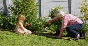 Grootmoeder en kleindochter die in tuin 4k planten stock videobeelden