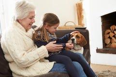 Grootmoeder en Kleindochter het Ontspannen thuis met Huisdierenhond stock foto's