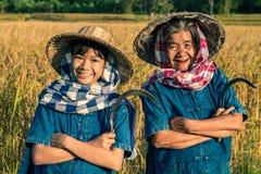 Grootmoeder en landbouwersnicht met rijstoogst Stock Foto's