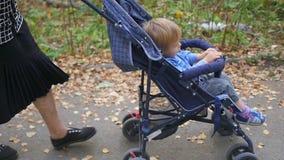 Grootmoeder met kleinzoongang in het Park stock video