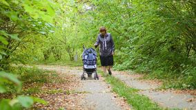 Grootmoeder met kleinzoongang in het Park stock videobeelden