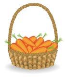 Grootmoedige oogst in een mooie rieten mand, verse wortelen De groenten zijn zeer smakelijk en vitamine Het is noodzakelijk voor royalty-vrije illustratie