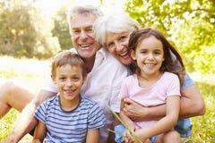 Grootouders die in openlucht met hun kleinkinderen zitten stock fotografie