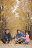 Grootouders en kleindochter het spelen in park met bladeren Stock Afbeeldingen