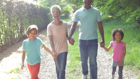Grootouders met Kleinkinderen die door Platteland lopen stock footage