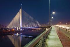 Grootste brug met één pyloon stock foto's