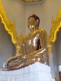 Grootste gouden Boedha in meditatieactie Royalty-vrije Stock Fotografie
