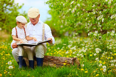 Grootvader die een boek lezen aan zijn kleinzoon, in bloeiende tuin stock afbeelding