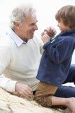 Grootvader en Kleinzoon die in Shell On Beach Together bekijken Royalty-vrije Stock Afbeelding