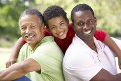 Grootvader met Zoon en Kleinzoon in Park Royalty-vrije Stock Afbeeldingen