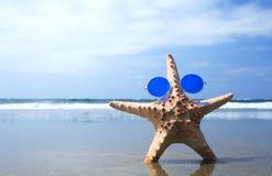 Groovy Starfish. Starfish at the beach in groovy sunglasses Stock Photo