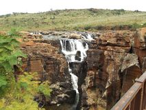 Gropar Sydafrika för lycka för Bourke ` s Arkivbilder