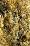 Gropig mineralisk yttersida Arkivbild