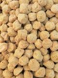 Gros morceau du soja Image stock
