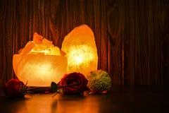 Gros morceaux de cuvette et lampes naturelles de sel   Sel de l'Himalaya image stock