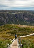 Gros Morne hiker taking in view stock photos