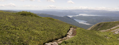 Gros Morne Mountain Trail Royaltyfri Foto