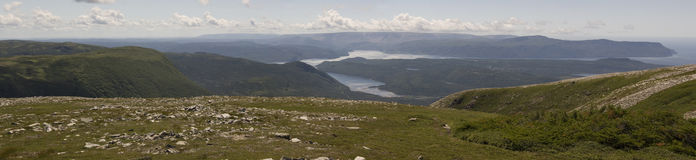 Gros Morne Mountain Trail Royaltyfria Bilder