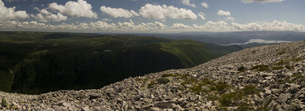 Gros Morne Mountain Trail Arkivbilder