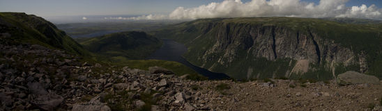 Gros Morne Mountain Trail Royaltyfria Foton