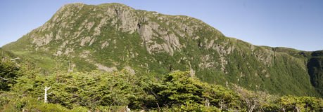 Gros Morne Mountain Trail Arkivfoton