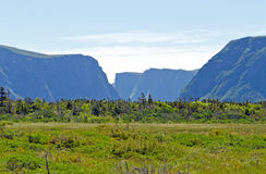 Gros Morne National Park Stock Photos