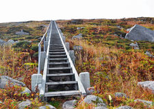 Gros Morne National Park. Steps leading up the summit of Gros Morne mountain Royalty Free Stock Image