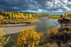 Gros Ventre rzeka Zdjęcia Stock